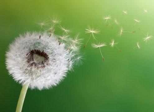آرامشی نو , لزوم احساس شایستگی برای دریافت آرزوها