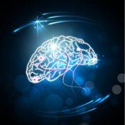 کنترل ذهن و بخشش با تکنیک سیلوا